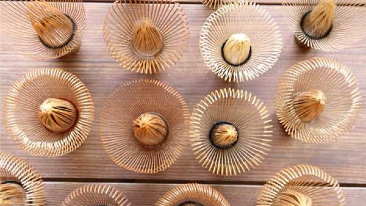 The origin and application of bamboo products