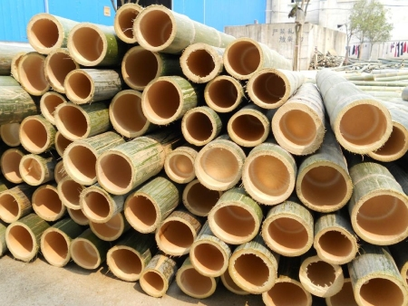 Bamboo products related advantages